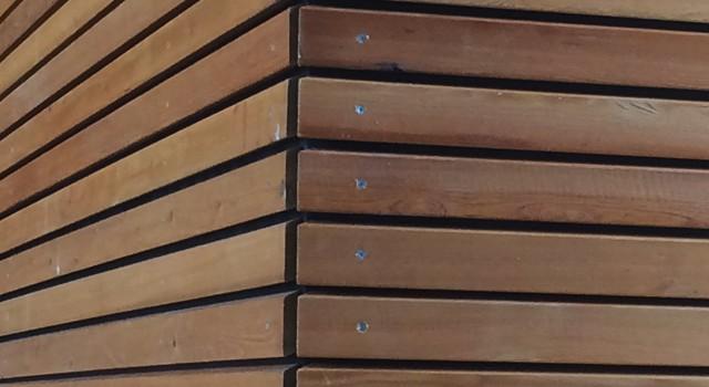 Holz, ein faszinierender Rohstoff
